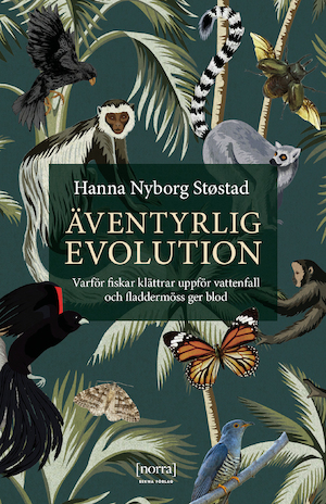 Äventyrlig evolution